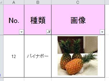 f:id:tokushitai:20170330154335j:plain